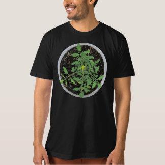 Camisa orgánica del signo de la paz del tomate de