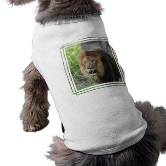 Camisa orgullosa del mascota del león ropa de perros