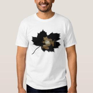 Camisa septentrional de la rana del atisbador de