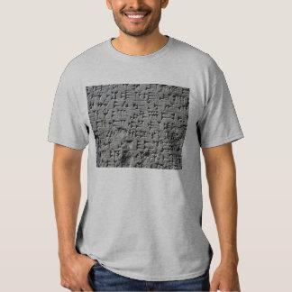 Camisa sumeria de la escritura