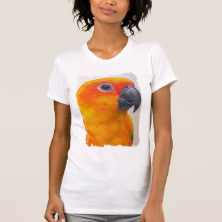 Camisa - Sun Conure