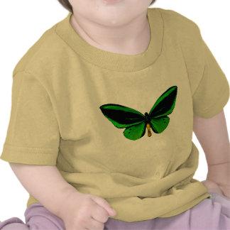 Camisa verde de la mariposa