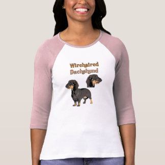 Camisa Wirehaired del Dachshund