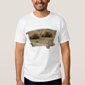 Camiseta 1531 del perro de las praderas remera