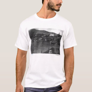 Camiseta 1892 del sitio de Parnassus
