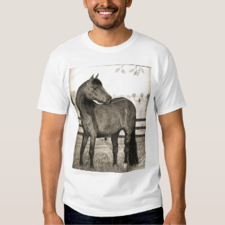 Camiseta 2007 del caballo de Morgan Playeras