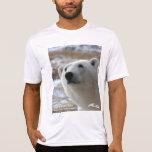 Camiseta 2 del oso polar (diseño del frente y de l