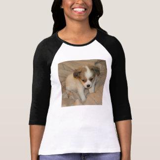 Camiseta 3 4 raglán chihuahua del blanco del
