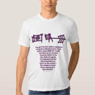 Camiseta Ama-gi3 Playeras