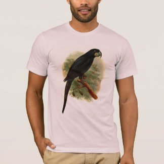 Camiseta americana básica de Anadorhynchus
