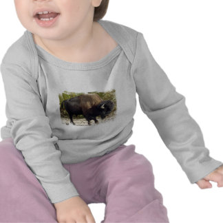 Camiseta americana del niño del búfalo