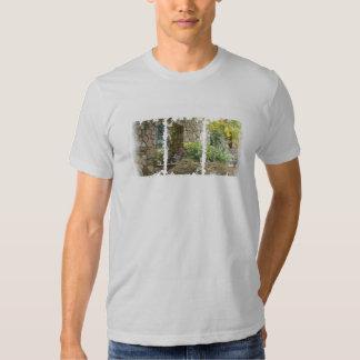 Camiseta apenada de American Apparel de las cajas Playeras