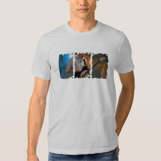 Camiseta apenada de American Apparel de las cajas Poleras