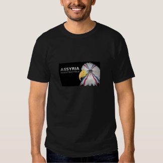 Camiseta asiria poleras