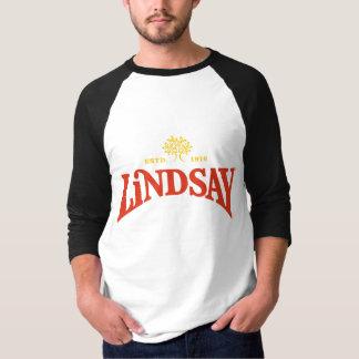 Camiseta básica del raglán de la manga de los playeras