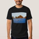Camiseta básica oscura del Land's End Playera