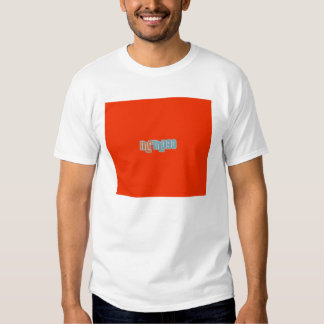 Camiseta Blanca chico frontal Playera