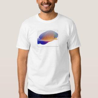 Camiseta coralina del Angelfish de la belleza Playeras