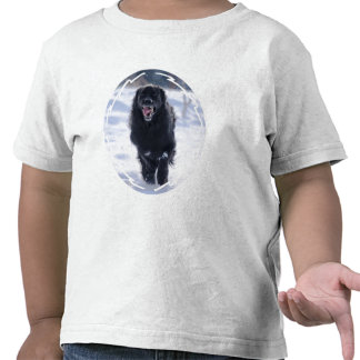 Camiseta corriente del niño de Terranova