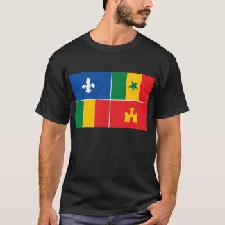 Camiseta criolla de la bandera