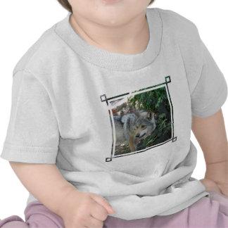Camiseta de acecho del bebé del lobo