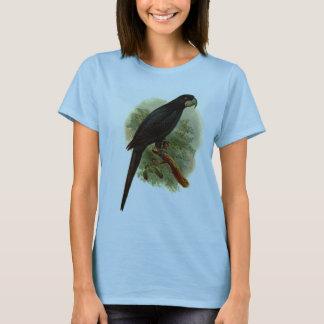 Camiseta de Anadorhynchus Purpurascens Hanes