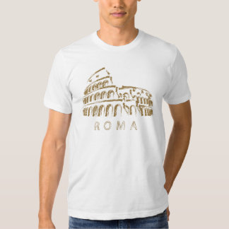 Camiseta de Colosseo Roma Remeras