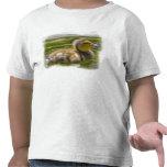 Camiseta de Duckie del bebé