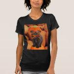 Camiseta de Halloween del gatito de la calabaza