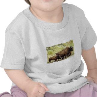 Camiseta de itinerancia del bebé del búfalo