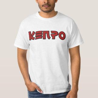 Camiseta de Kenpo Remeras