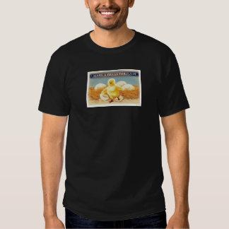 Camiseta de la brecha playeras