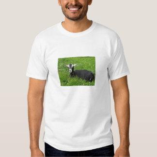 Camiseta de la cabra remeras