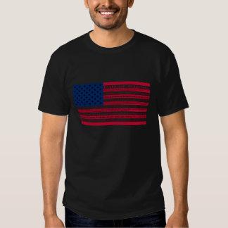 Camiseta de la Declaración de Derechos Remeras