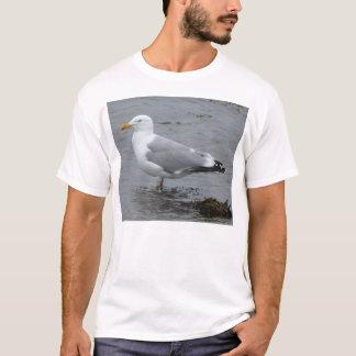 Camiseta de la gaviota de arenques