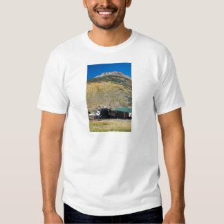 Camiseta de la locomotora 315 para Railfans Playera