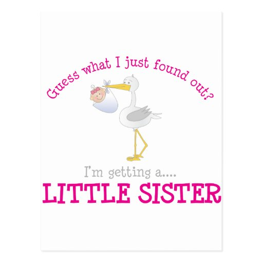 Camiseta de la pequeña hermana de la cigüeña tarjeta postal