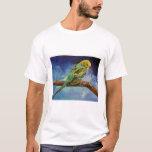Camiseta de la pintura del Parakeet