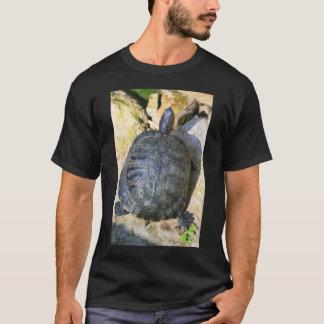 Camiseta de la tortuga