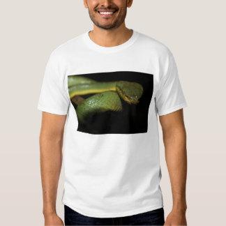 Camiseta de la víbora de hoyo remeras