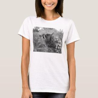 Camiseta de las señoras - almirante Butterfly