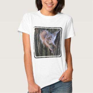 Camiseta de las señoras de la ardilla de árbol poleras