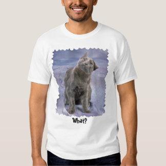 ¿Camiseta de Lucifer, qué? Playera