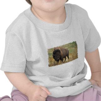 Camiseta de madera del bebé del bisonte