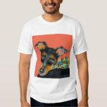 Camiseta de Manchester Terrier Playera