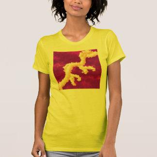 Camiseta de Nandi
