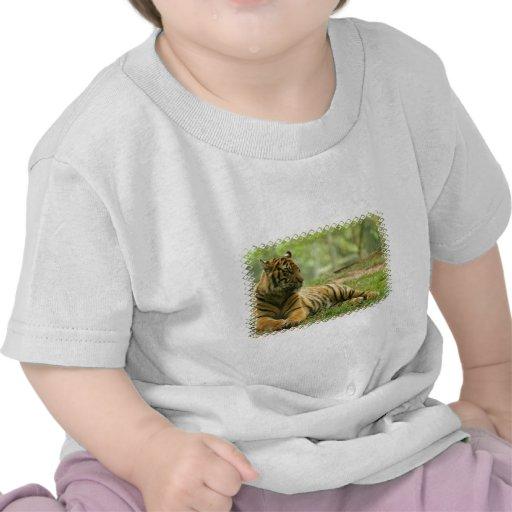 Camiseta de reclinación del bebé del tigre