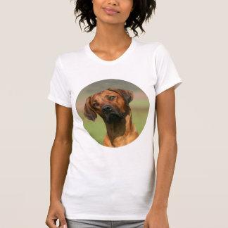 Camiseta de Rhodesian Ridgeback