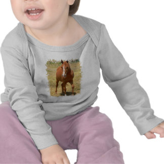 Camiseta de un año del niño del caballo de la