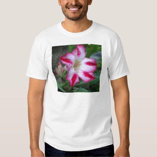 Camiseta del Adenium Remeras